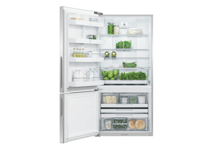 Fisher & Paykel Bottom Freezer Refrigerator - RF170BLPX6-N product photo other01 L