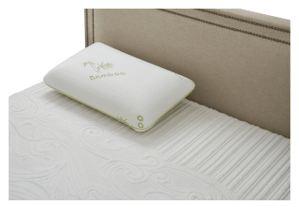 Collection BM - Standard Eucalyptus-Infused Memory Foam Pillow product photo